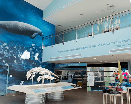 Main entrance of manatee lagoon, with manatee mural.
